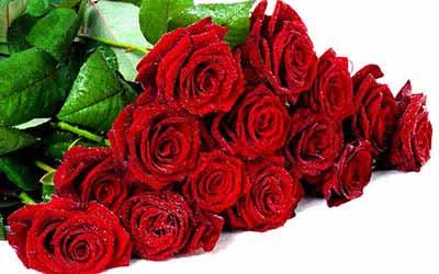 Купить букет цветов в брянске, заказать цветы в ставрополе с доставкой недорого